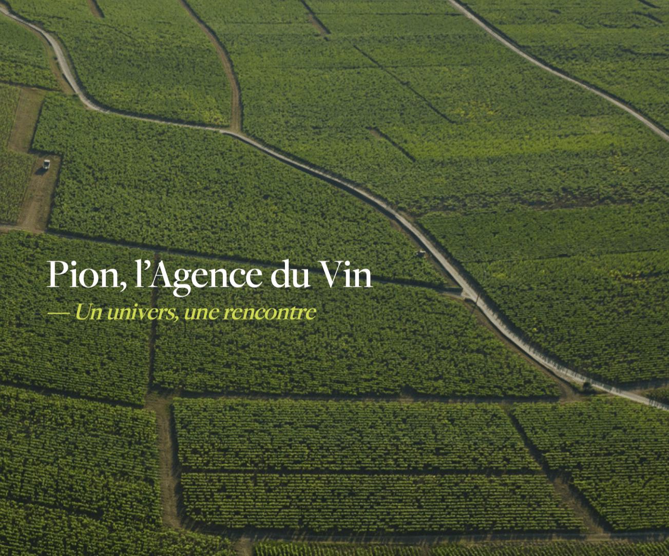 Agence Pion, le meilleur du vin